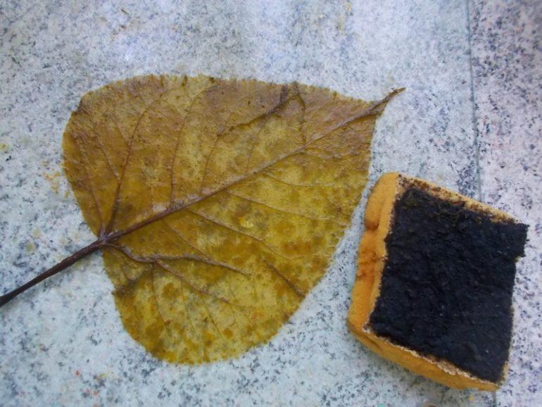 Декупаж стола осенними листьями