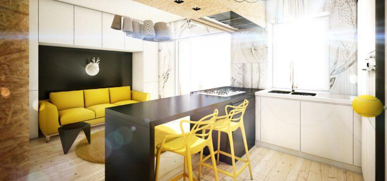 Интерьер кухни гостиной 16 квадратных метров