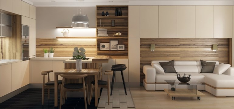 Кухня-гостиная площадью 25 квадратных метров