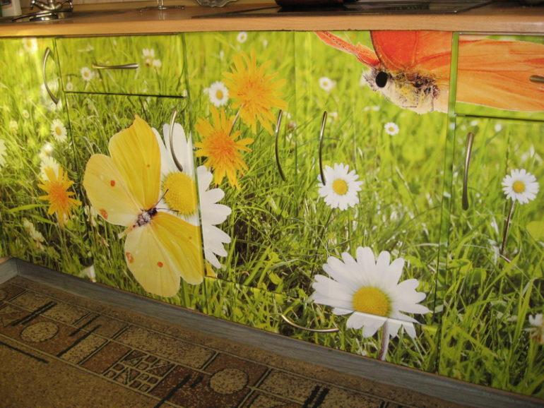 Самоклейка с фотографиями ромашек и бабочек